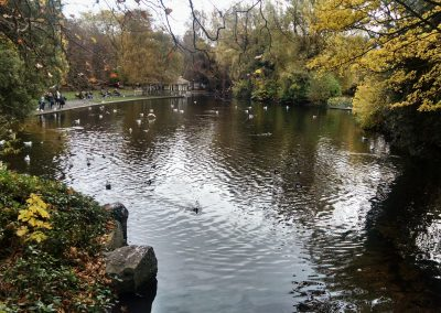 St. Stephens Green Pond